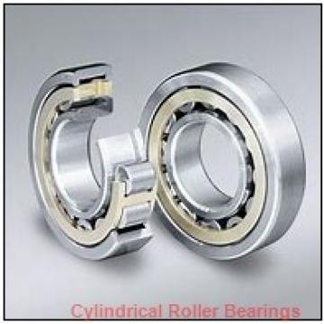 Link-Belt MR5313TV Cylindrical Roller Bearings