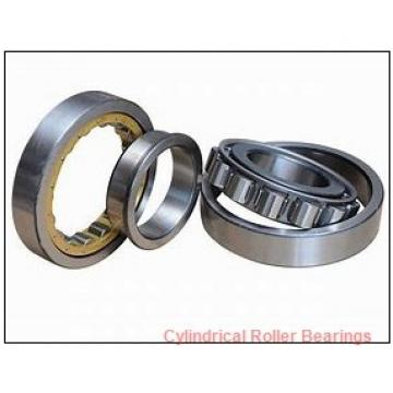 American Roller CD 246 Cylindrical Roller Bearings