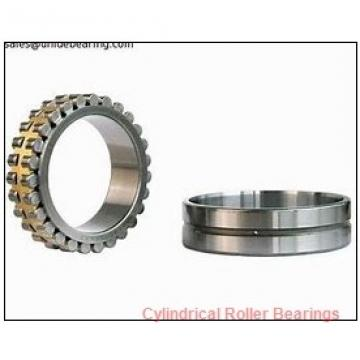 30 mm x 55 mm x 19 mm  INA SL183006 Cylindrical Roller Bearings