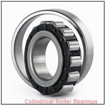 American Roller CDA 240 Cylindrical Roller Bearings